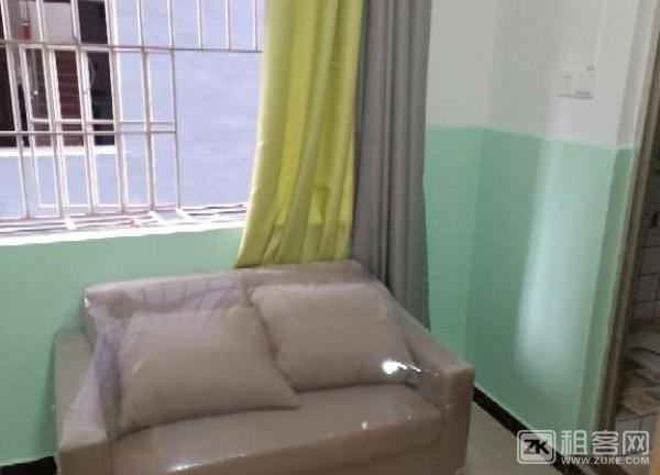 西丽新屋村,精装公寓,房东直租,配套齐全-3
