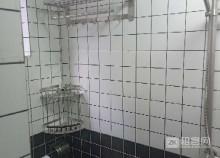 坪洲全新公寓,房东直租,拎包入住-4