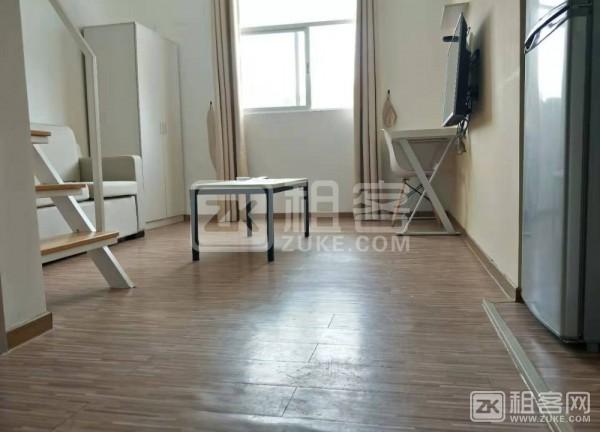 罗湖繁华区欧式公寓。-3