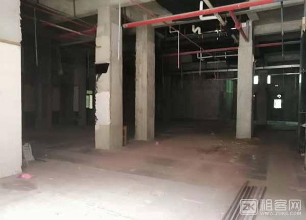 西乡沃尔玛大益广场1楼旺铺招租-3