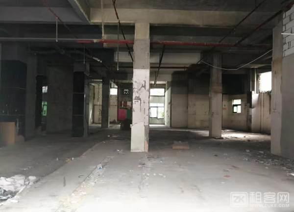 西乡沃尔玛大益广场1楼旺铺招租-4