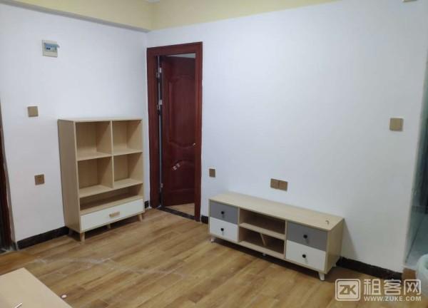 春天里居精品公寓 低楼层两室一厅-1