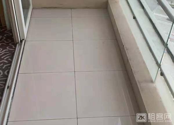 罗湖黄贝岭丹枫白露精装一房一厅-5