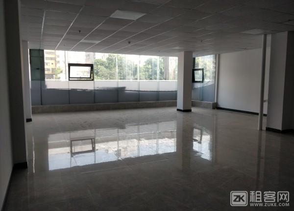 布吉木棉湾商业旺铺超低价物业直租-3
