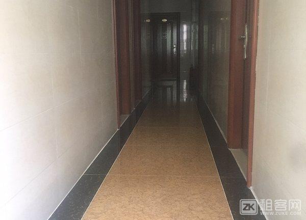 全新公寓一房一厅,大单间招租-5