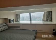 红岭华讯中心复式三室一厅-3