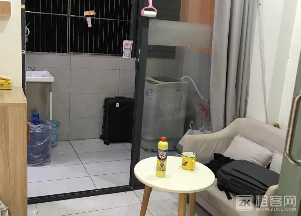 固戍地铁站100米连锁公寓出租-5
