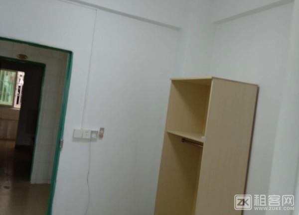 全新公寓,首次出租。专人管理。-4